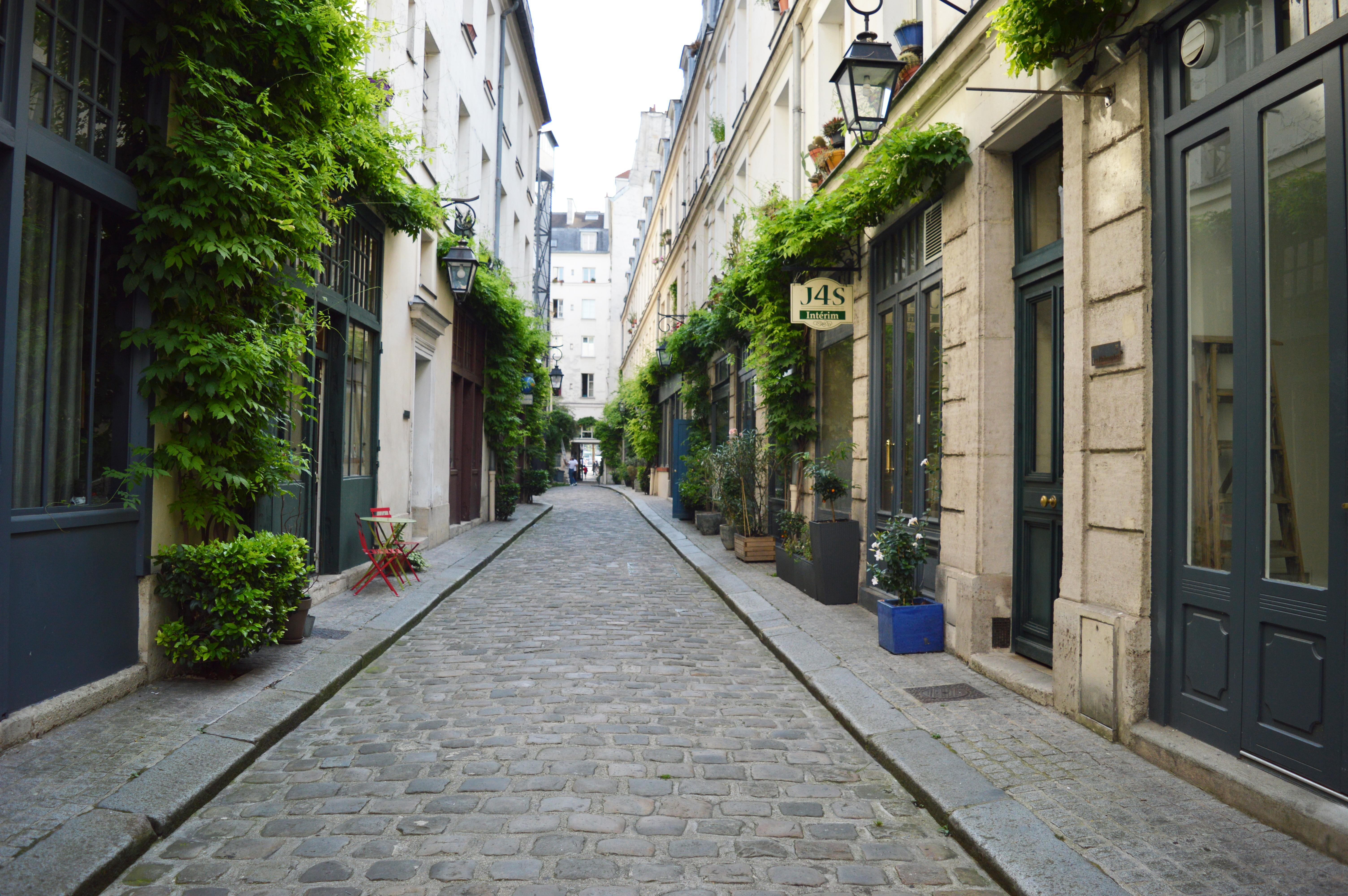 streetcourdamoye